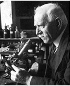 DOMINGO SÁNCHEZ Y SÁNCHEZ Un científico de talla mundial, un perfecto desconocido para los españoles.